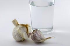 Exponeringsglas av vatten och någon vitlök royaltyfri foto