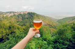 Exponeringsglas av vin i hand av turisten i naturligt landskap av den gröna Alazani dalen, Georgia Hemlagad dryck royaltyfri fotografi