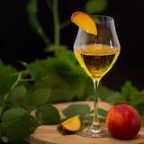 Exponeringsglas av vin med frukter Fotografering för Bildbyråer