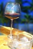 Exponeringsglas av vin och is Arkivbild