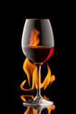 Exponeringsglas av vin på svart bakgrund med brandfärgstänk Fotografering för Bildbyråer