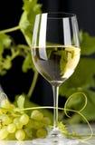 Exponeringsglas av vit wine Royaltyfria Bilder