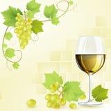 Exponeringsglas av vit wine Arkivbilder