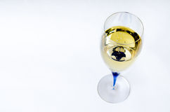 exponeringsglas av vitt vin Arkivbilder