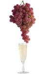 Exponeringsglas av vitt vin med druvor på en vit bakgrund Arkivfoto