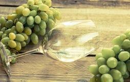 Exponeringsglas av vitt vin med gruppen av druvan Fotografering för Bildbyråer