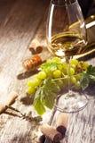 Exponeringsglas av vitt vin på tappningträtabellen royaltyfri foto