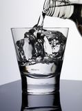 Exponeringsglas av vodka royaltyfri bild