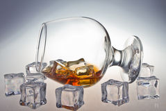 Exponeringsglas av whisky Royaltyfri Bild