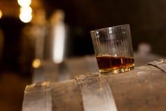Exponeringsglas av whisky i spritfabrik royaltyfri foto