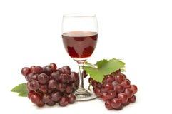 Exponeringsglas av wine och druvor Arkivfoton