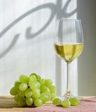 Exponeringsglas av wine och druvor Arkivbild