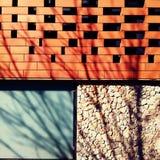 Exponeringsglas för blått för röd tegelsten för stenvägg Arkivbild