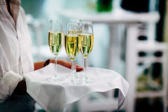 Exponeringsglas för uppassareportionvin Röda, vit- och Champagneexponeringsglas på sociala händelser royaltyfri bild