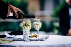 Exponeringsglas för uppassareportionvin Röda, vit- och Champagneexponeringsglas på sociala händelser arkivbilder