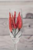 Exponeringsglas för vin för peppar för röd chili inre Arkivfoto