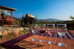 Exponeringsglas för vinavsmakning royaltyfri fotografi