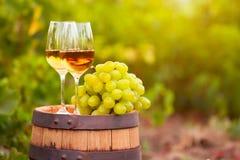 Exponeringsglas för vitt vin, ung vinranka och grupp av druvor mot vineya Royaltyfria Foton