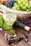 Exponeringsglas, flaska och druvor för vitt vin Royaltyfri Foto