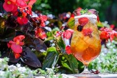 exponeringsglas iced tea Arkivfoto