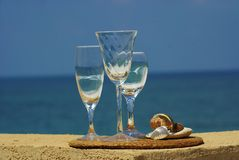 exponeringsglas inom havsskalwine royaltyfri fotografi