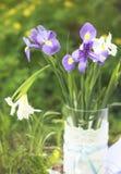 exponeringsglas irises vasen Arkivbild