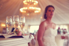 4 exponeringsglas med champagne och bruden i bakgrunden Royaltyfria Bilder