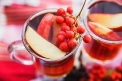 Exponeringsglas med drycken med äpplet och rönnbäret Höstcompositi Arkivbild