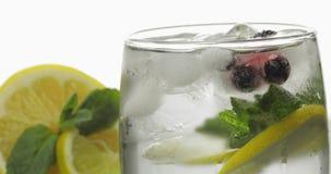Exponeringsglas med en kall drink med sidor av mintkaramell-, limefrukt-, citron- och iskuber arkivfoto