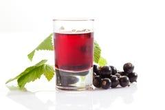 Exponeringsglas med genever, svarta vinbär arkivbild