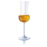 Exponeringsglas med konjak Arkivfoto