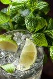 Exponeringsglas med is, mintkaramellsidor och limefruktskivor royaltyfria bilder