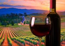 Exponeringsglas med rött vin och flaskan, atmosfärsolnedgång Arkivbilder