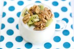 Exponeringsglas med vanlig yoghurt med kiwin och muttrar Fotografering för Bildbyråer