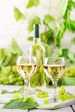 Exponeringsglas med vitt vin, nya druvor och en flaska av vitt vin på en trätabell Arkivfoto