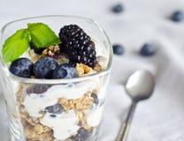 Exponeringsglas med yoghurt, granola och friuts arkivbilder