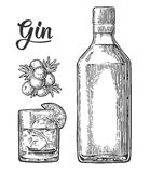 Exponeringsglas och flaska av gin och filialen av en med bär stock illustrationer