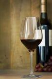 Exponeringsglas och flaska av rött vin med druvor Royaltyfri Foto