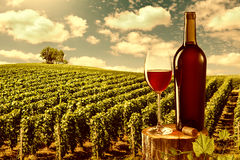 Exponeringsglas och flaska av rött vin mot vingårdlandskap Royaltyfria Foton