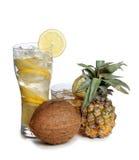 Exponeringsglas och kokosnöt Fotografering för Bildbyråer