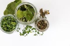 Exponeringsglas skorrar med olika typer av te, bästa sikt royaltyfri foto