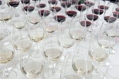 exponeringsglas som winetasting Royaltyfri Fotografi