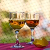exponeringsglas två Royaltyfri Fotografi