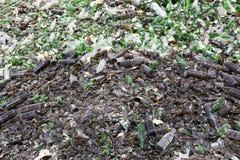 Exponeringsglasavfalls i återvinninglätthet brun green för flaskor Arkivbilder
