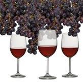 exponeringsglasdruvarött vin arkivbilder