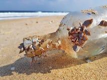Exponeringsglaspostflaska på stranden royaltyfria bilder