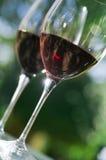 exponeringsglasrött vin Arkivbild