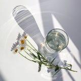 Exponeringsglasvasen med vatten och en filial av kamomillblommor ligger på en vit tabell i solljus med härliga glänsande viktig o royaltyfria foton