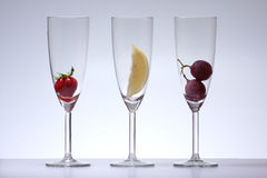exponeringsglaswine royaltyfri fotografi
