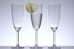 exponeringsglaswine royaltyfri foto